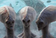 Aliens Might Destroy Whole Life on Earth with Just a Single Message Says Researchers